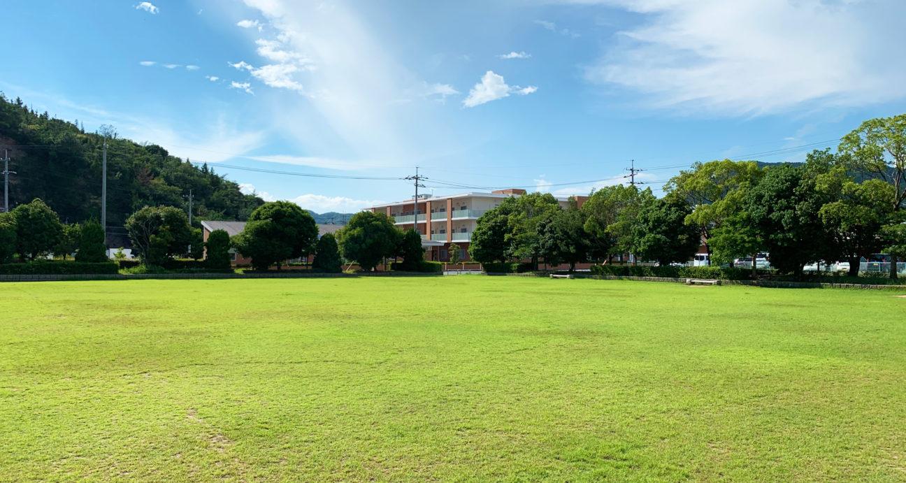 緑豊かな田井みなと公園の芝生広場
