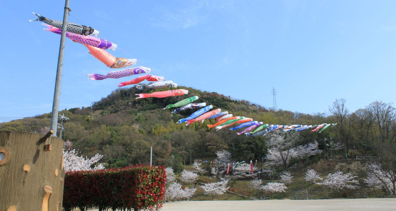 たくさんの鯉のぼりが空を泳ぐ横田公園