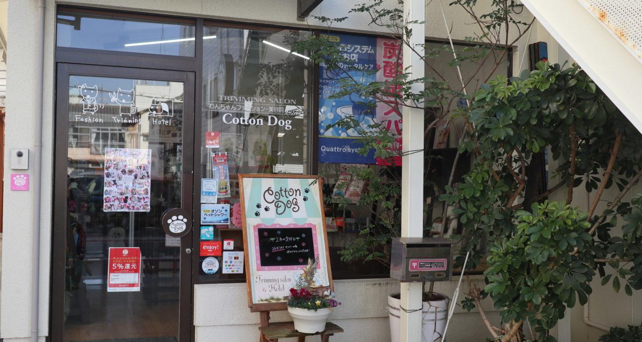 コットンドックお店の入口