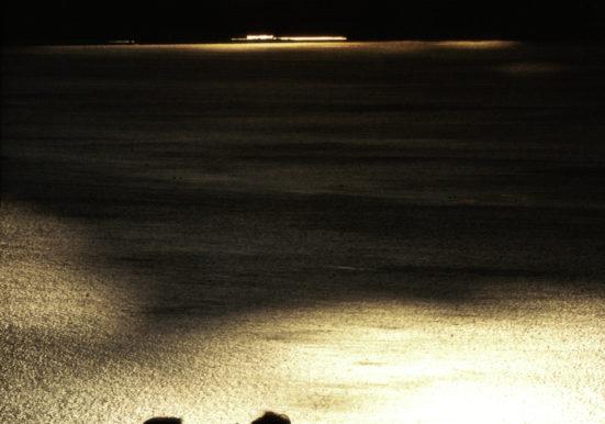 瀬戸の夕景