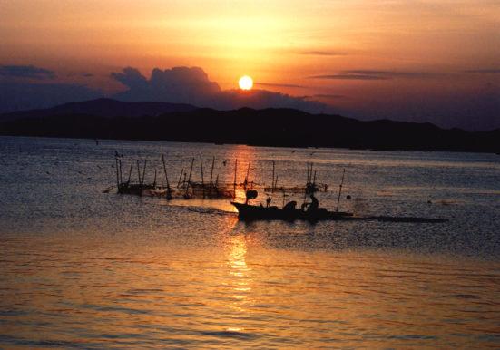 朝陽に輝く漁作業