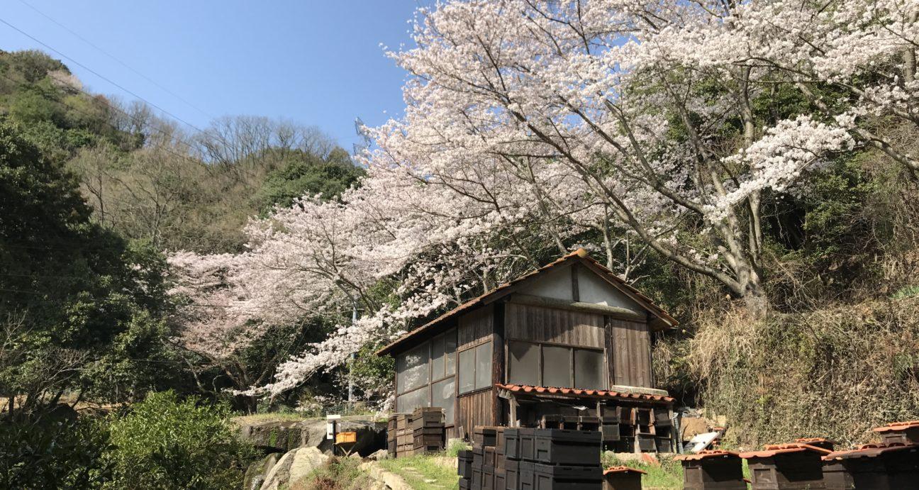 一の滝養蜂園
