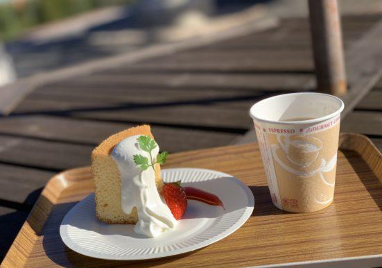 お皿に盛りつけられたシフォンケーキと紅茶