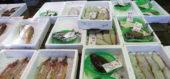 魚市場に水揚げされた新鮮なお魚