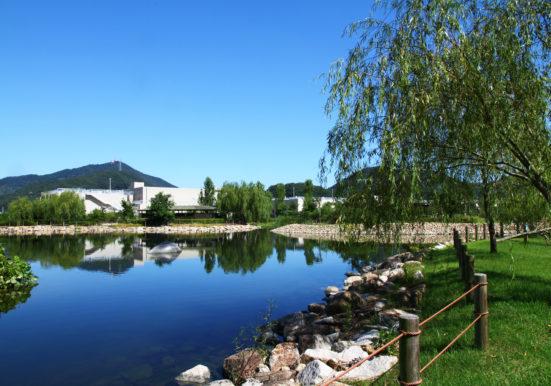 綺麗な池と緑豊かな公園