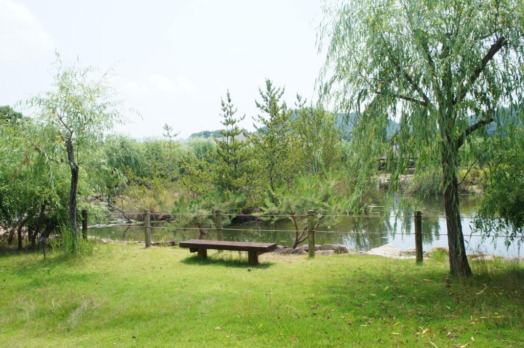 緑豊かな自然環境体験公園